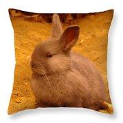 A Little Bunny Throw Pillow
