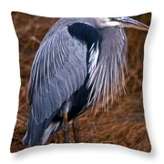 A Little Chilly Throw Pillow