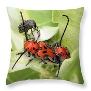 A Little Crowded Throw Pillow