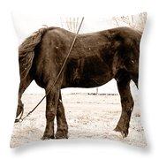 A Little Hay Throw Pillow