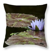A Little Lavendar Water Lily Throw Pillow