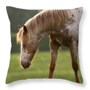A Little Nap Throw Pillow