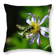 A Little Nectar Seeking Fruit Fly Throw Pillow