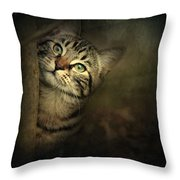 A Little Shy Throw Pillow