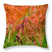 A Little Spring Miracle Throw Pillow
