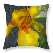 A Lively Soul Blooms Throw Pillow