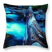 A Log Over Rapids Throw Pillow