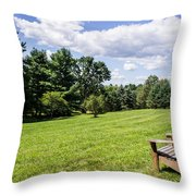 A Lone Chair In August Throw Pillow