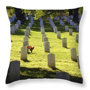 A Lone Remembrance Throw Pillow