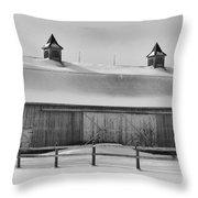 A Long Barn  7k00040b Throw Pillow