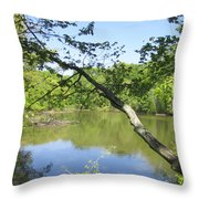 A Look At Lake Throw Pillow by Good Taste Art