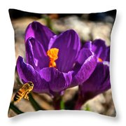 A Look From The Left Throw Pillow
