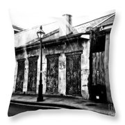 A Look Of Yesteryear Throw Pillow