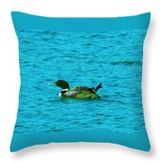 A Loonie Loon Throw Pillow by Jeff Swan