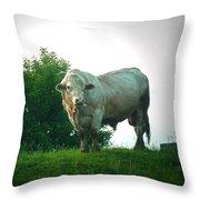 A Lot Of Bull Throw Pillow