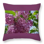 A Lovely Color Throw Pillow