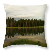 A Lovely Reflection Throw Pillow