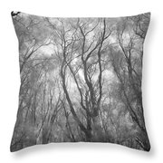 A Low Angle View Of A Ironwood Throw Pillow