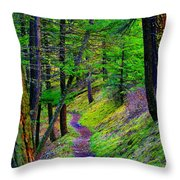 A Magical Path To Enlightenment Throw Pillow