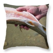 A Man Cleans A Lake Trout Fish Throw Pillow