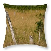 A Marsh In Maine Throw Pillow
