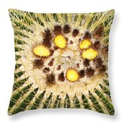 A Mexican Golden Barrel Cactus With Blossoms Throw Pillow