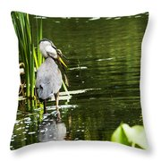 A Missing Frog Throw Pillow