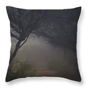 A Misty Morning  Throw Pillow