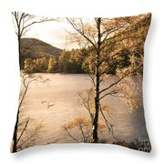 A Moment Of Gold Throw Pillow