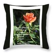 A Moment Of Patience Throw Pillow