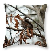 A Moment's Glance Throw Pillow