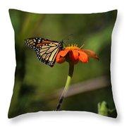 A Monarch Butterfly 1 Throw Pillow