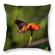 A Monarch Butterfly 3 Throw Pillow