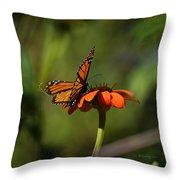 A Monarch Butterfly 4 Throw Pillow