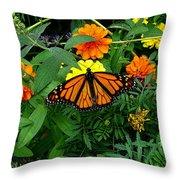 A Monarchs Colors Throw Pillow