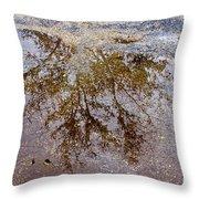 A Monet Moment IIi Throw Pillow