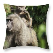 A Monkey And Its Baby Sitting On Her Throw Pillow by Diane Levit