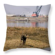 A Moose Walks On The On Reclaimed Land Throw Pillow