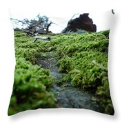 A Mossy Perspective Throw Pillow