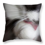 A Most Challenging Model Throw Pillow