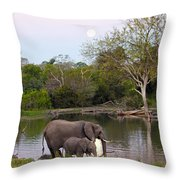 A Mother And Child Throw Pillow