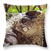 A Mother Could Love Him Throw Pillow