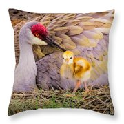 A Mother's Lovely Touch Throw Pillow