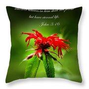 A Mountain Flower  John 3 16 Throw Pillow