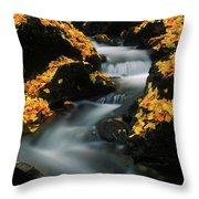 A Mountain Stream Carves A Path Throw Pillow