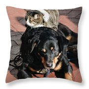 A Mouse On A Cat On A Dog In Santa Throw Pillow
