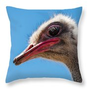 A Mug Only A Mother Could Love. Throw Pillow by Jean Noren