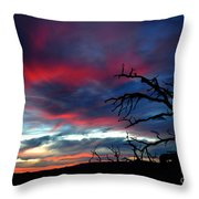 A Murmur Of Fuschia Throw Pillow