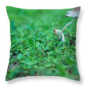 A Mushroom Sprouts Throw Pillow