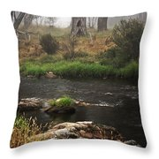 A Mystical Place Throw Pillow